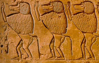 Monkeys In Ancient Egypt