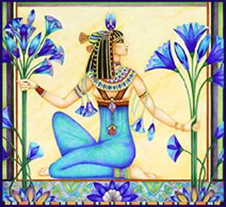 The Egyptian Lotus Flower