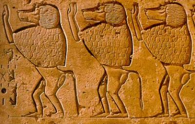 Monkeys In Ancient Egypt