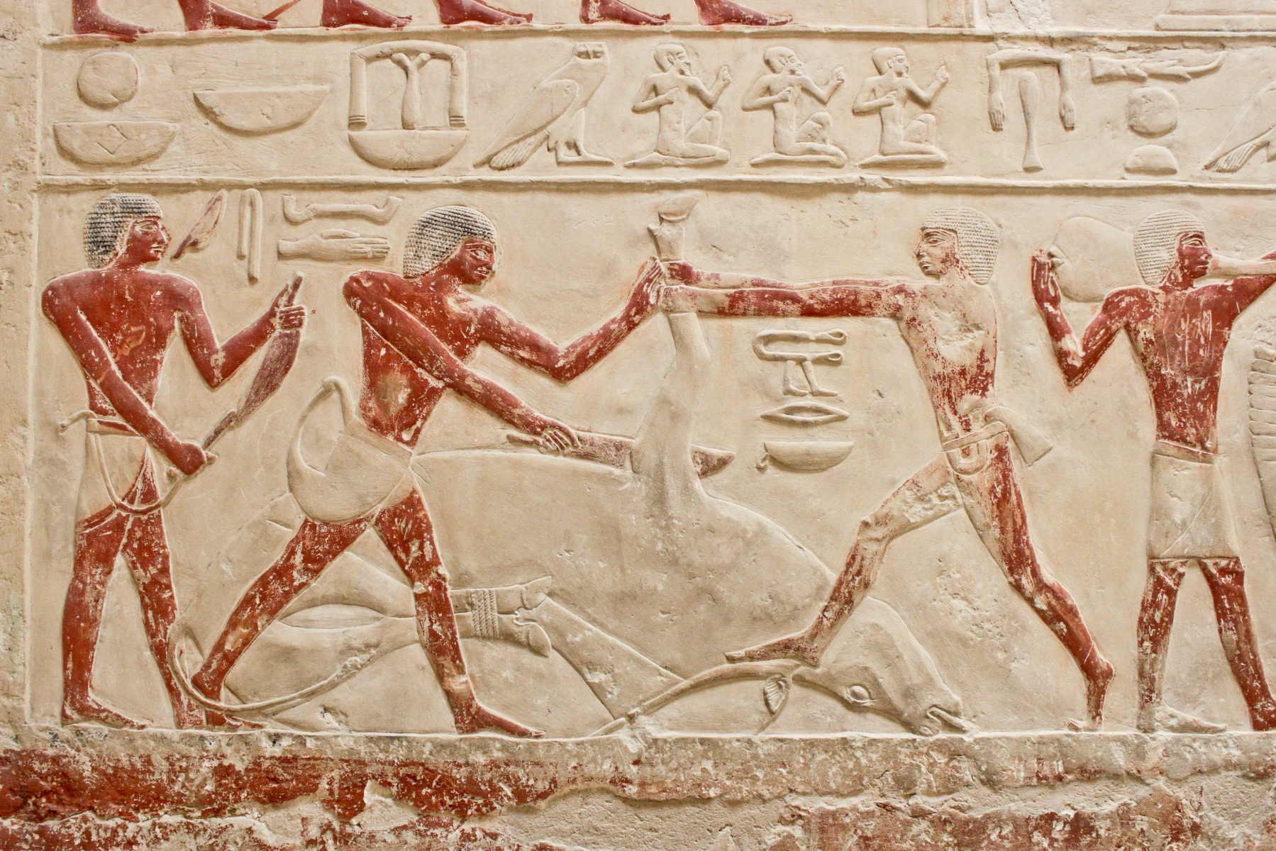 Find out about the Ancient Egyptian Sports and Games, Read now the thrilling facts about Ancient Egypt and share your thoughts via comments